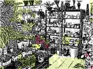 Цветочный бизнес. Как продавать цветы